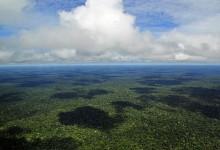 amazonia_wikimedia_commons__